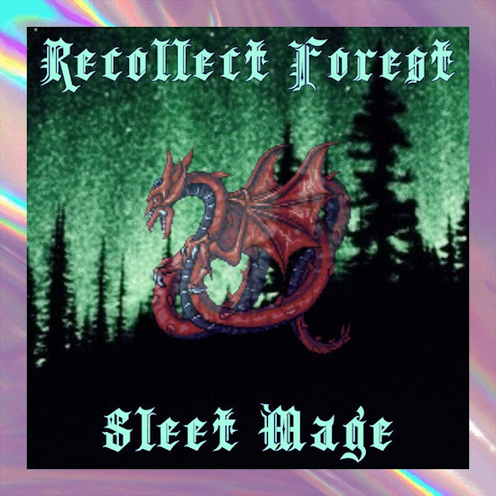Recollect Forest